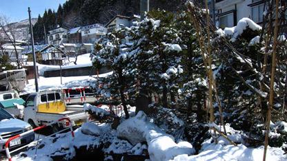 snowbank.jpg